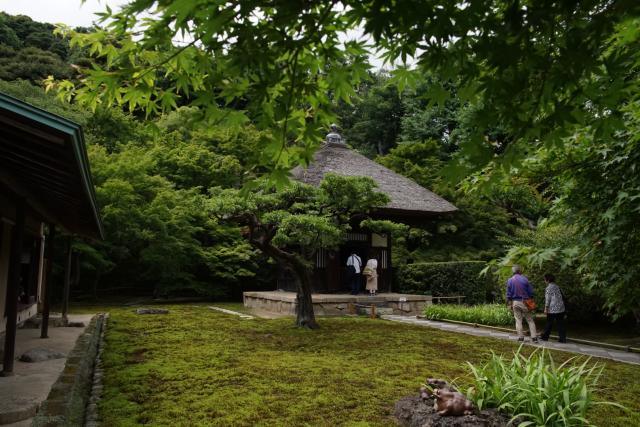 長壽寺の庭園