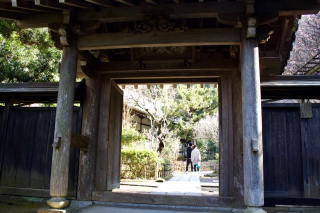 黄梅院の山門