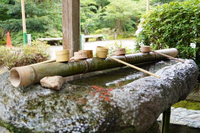 櫻井神社(福岡県波多江駅) - 手水舎の写真