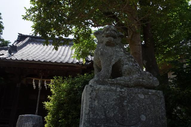 八坂大神(神奈川県鎌倉駅) - 狛犬の写真