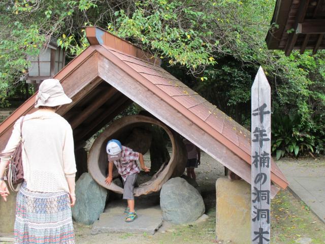 宮崎県都萬神社の写真