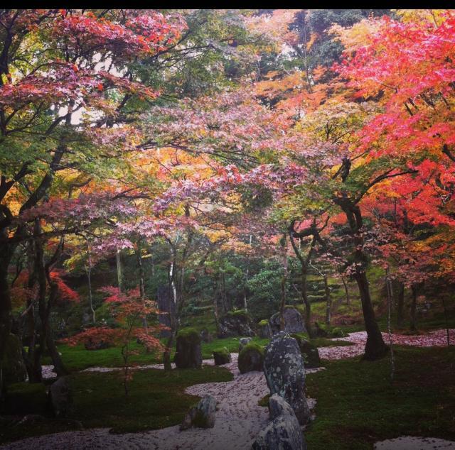 光明禅寺の庭園