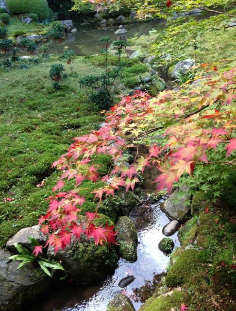 福岡県千如寺大悲王院の庭園