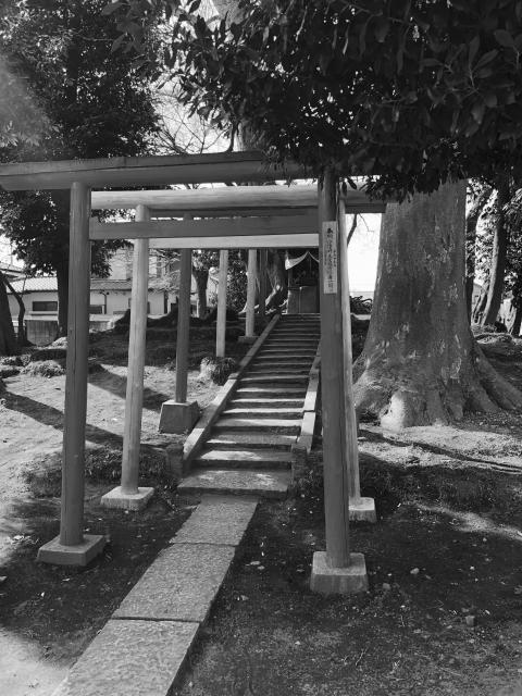 埼玉県三変稲荷神社の写真