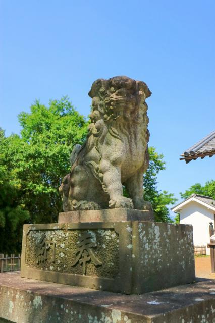眞田神社の狛犬