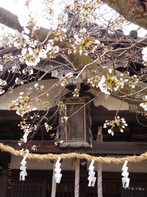 林神社(兵庫県林崎松江海岸駅) - 本殿・本堂の写真