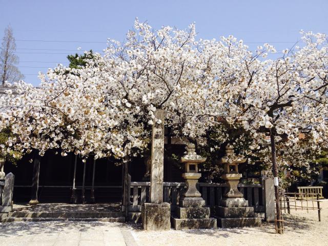 林神社(兵庫県林崎松江海岸駅) - その他建物の写真
