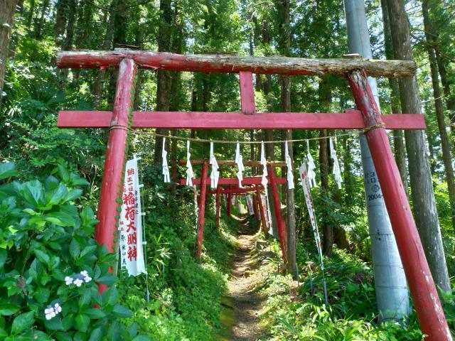埼玉県上之臺稲荷神社の鳥居