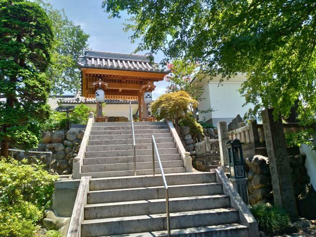 埼玉県少林寺の山門
