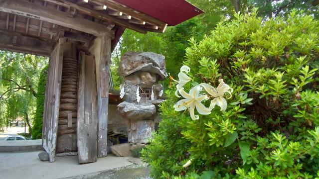 一本杉稲荷神社の近くの神社お寺|玉泉寺
