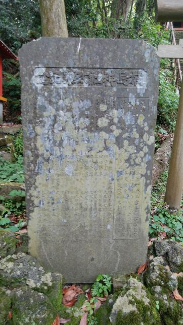 神社の近くの神社お寺|厳島神社