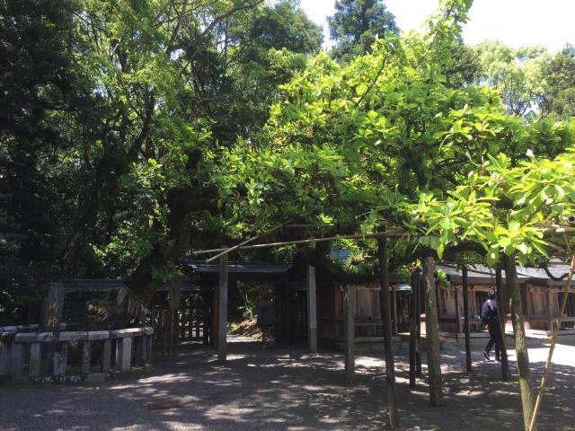 宗像大社(福岡県東郷駅) - 庭園の写真