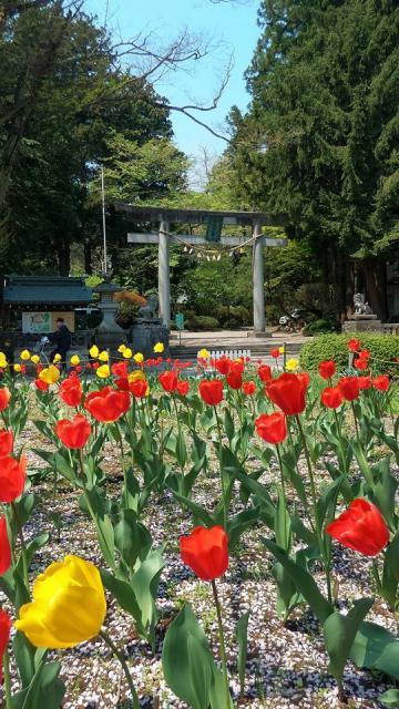駒形神社の庭園