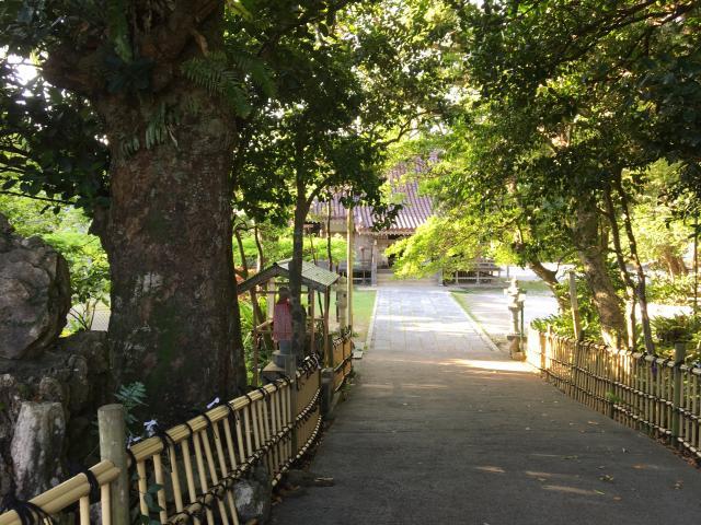 沖縄県金武観音寺の写真