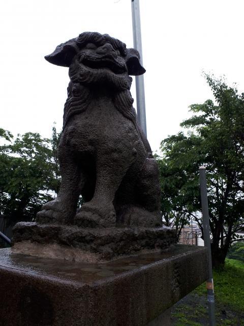 豊足神社(北海道銭函駅) - 狛犬の写真