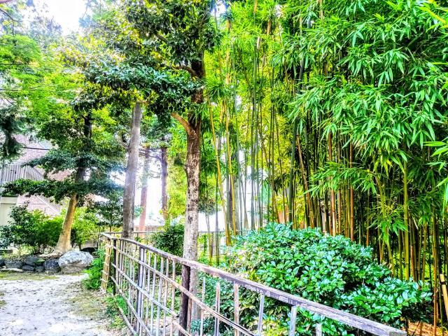 八幡社 春日社合殿の庭園