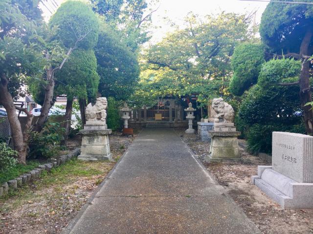 駒ケ林蛭子神社の狛犬