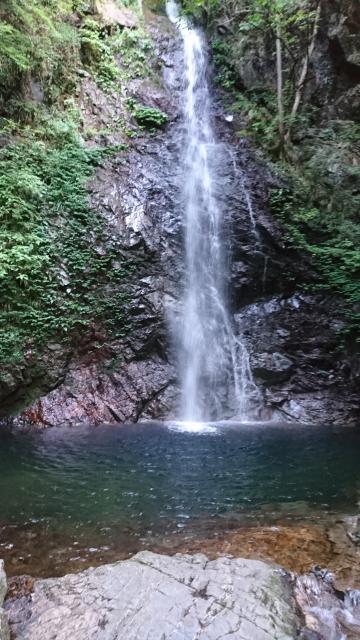 武蔵御嶽神社の自然