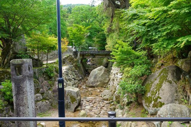 粟島神社の自然