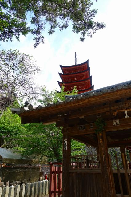 荒胡子神社の建物その他