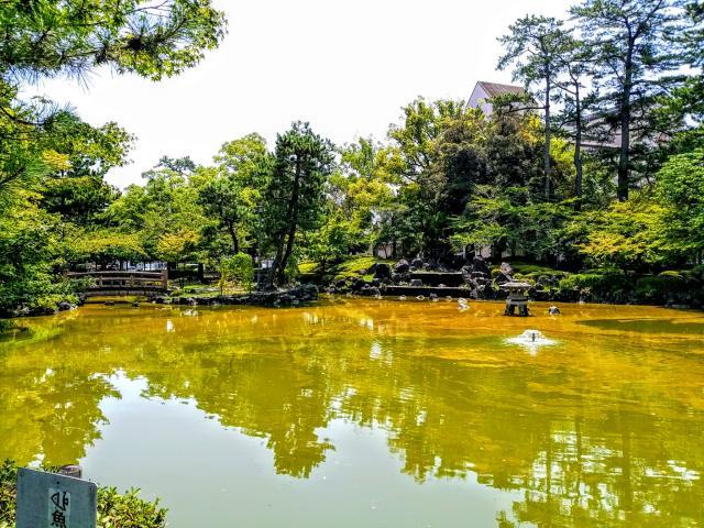 豊國神社(愛知県中村公園駅) - 庭園の写真