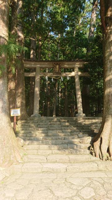 和歌山県飛瀧神社の鳥居