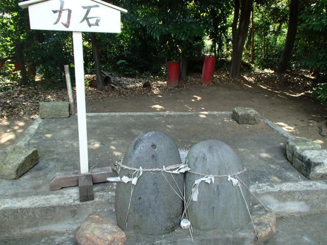 島根氷川神社の建物その他