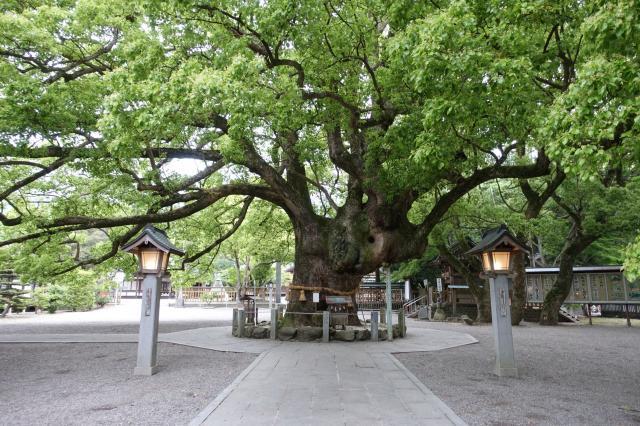 徳島県大麻比古神社の写真