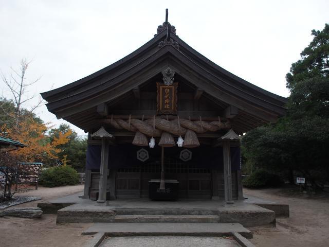 鳥取県白兎神社の本殿