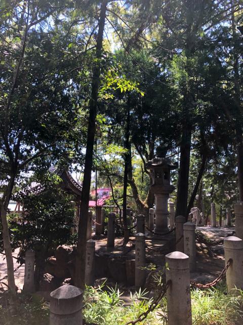 愛知県新溝神社の建物その他