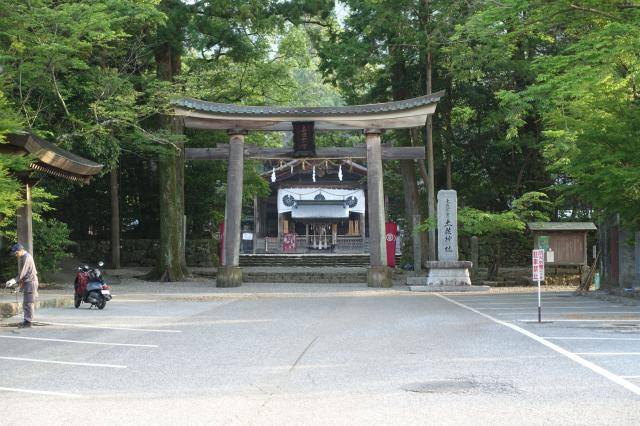 高知県土佐神社の鳥居