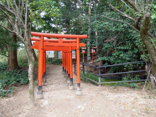 福島県西坂ねこ稲荷神社の鳥居