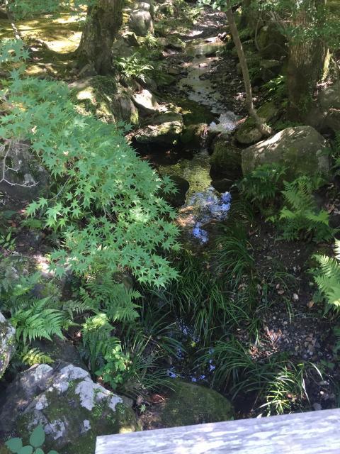 子安神社の庭園