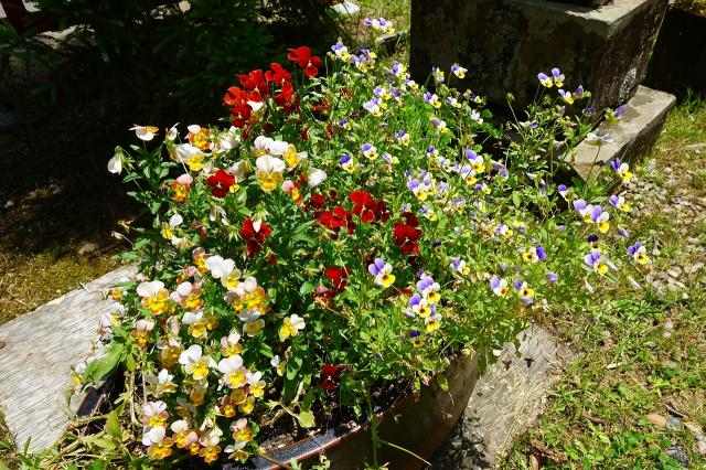 都稲荷社の庭園