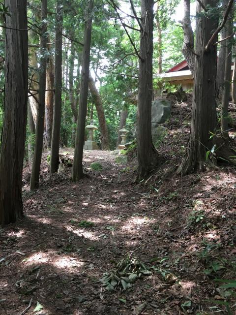 大山祇神社の周辺