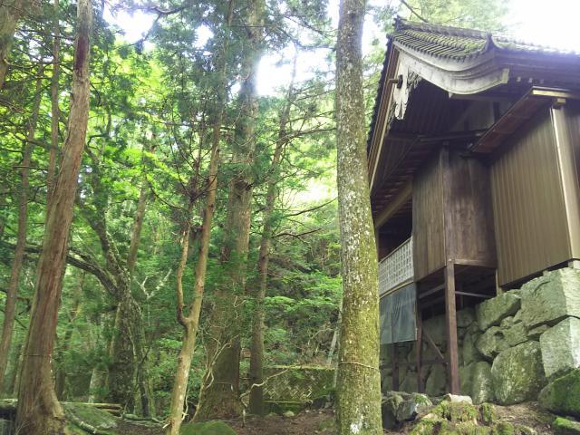 風神神社の本殿