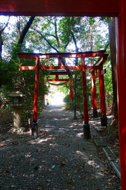 大阪府磐手杜神社の本殿