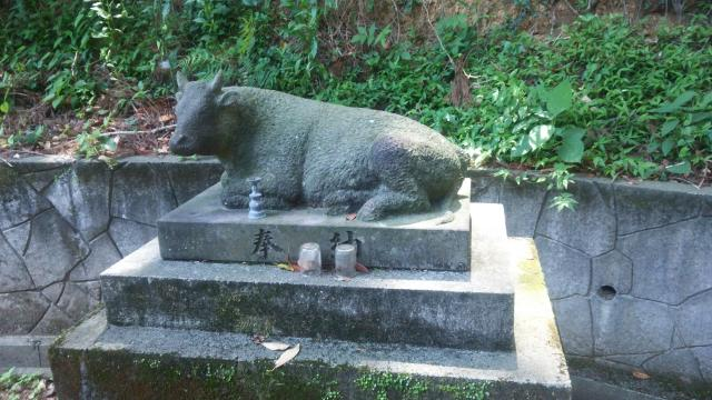 宮崎県石神神社の写真