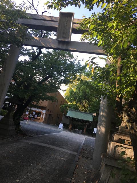 愛知県若宮八幡社の本殿