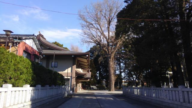 葛西神社(東京都金町駅) - その他建物の写真