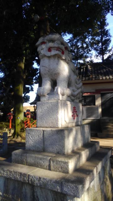 葛西神社(東京都金町駅) - 狛犬の写真