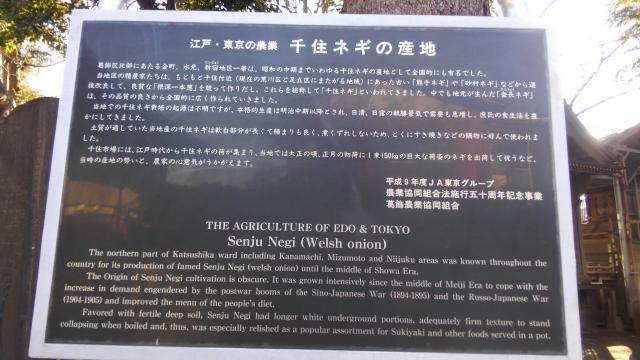 葛西神社(東京都金町駅) - 歴史の写真