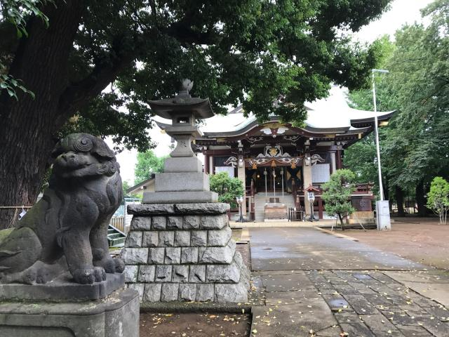 諏訪神社(東京都西早稲田駅) - 狛犬の写真