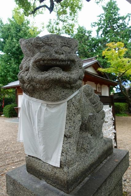 磯良神社の狛犬