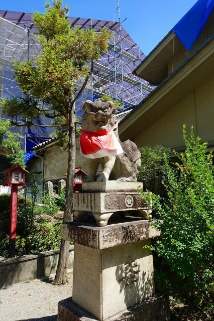 茨木神社の狛犬