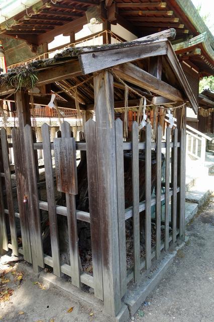 茨木神社の建物その他