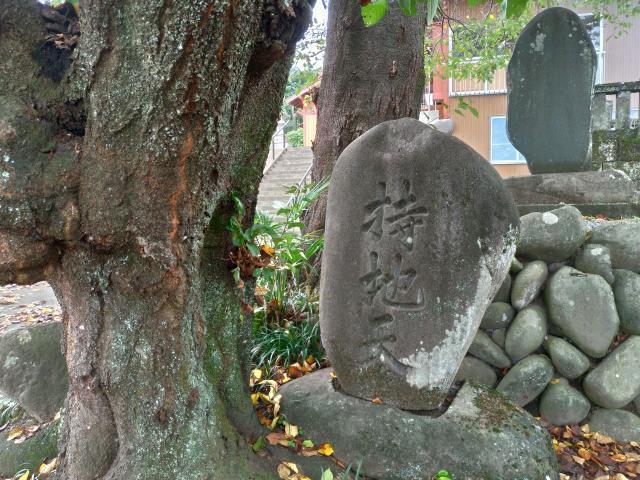 先倉神社(群馬県松井田駅) - その他建物の写真
