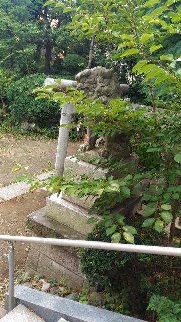 東京都小岩神社の狛犬