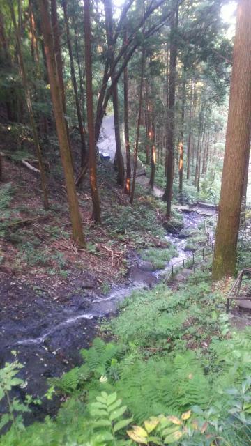 茨城県鳴滝不動の自然