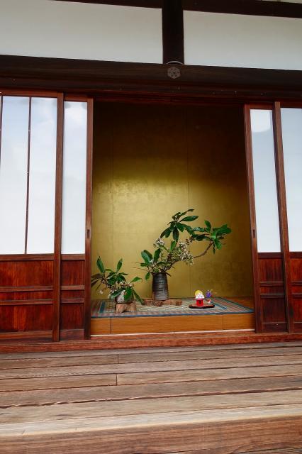 京都府戒光寺の本殿